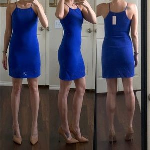 NWT Blue eyelet high neck fitted dress